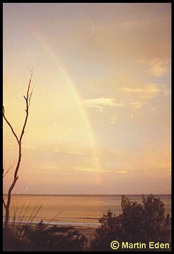Southern Tasmanian Rainbow